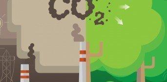 Covid-19'un Karbon Ayak İzine Olan Etkisi