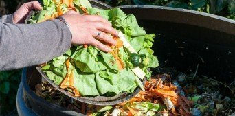 Evde Kompost Nasıl Yapılır?